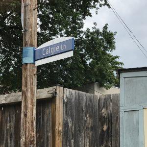 Calgie Lane - Cabbgetown South